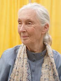 Jane-Goodall-2011